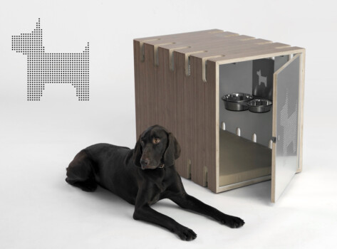 Springtime studio for product design and branding Bench dog